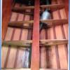 classic mahogany launch boat12